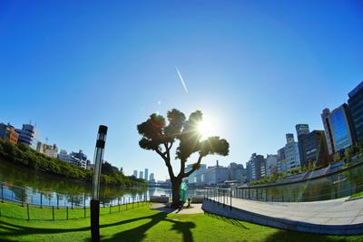 タイトル  :  「Good Morning ! Nakanoshima !」  撮影場所  :  中之島公園東端部(剣先公園)  名前  :  masa.kuriさん