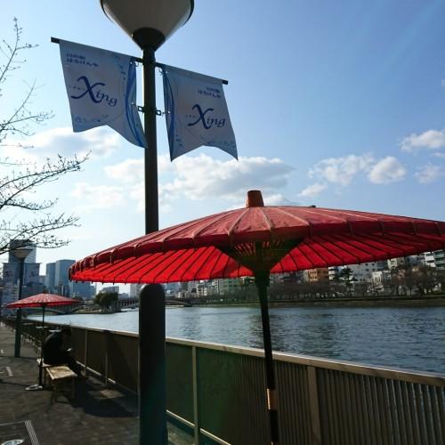 桜の季節は、天満橋「川の駅 はちけんや」でまったりと。