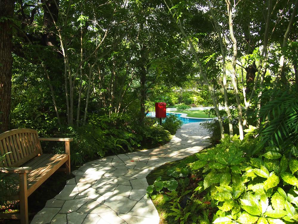 木漏れ日で、夏でも涼しげな庭園。この奥には樹齢300年を越える大きなクスノキがあります。