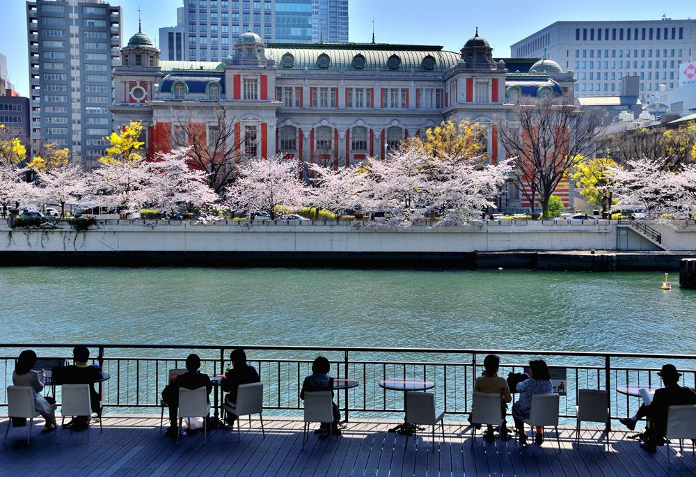 作品名:歴史を感じて / 撮影場所:大阪市中央公会堂 / 撮影者:us-hiroさん